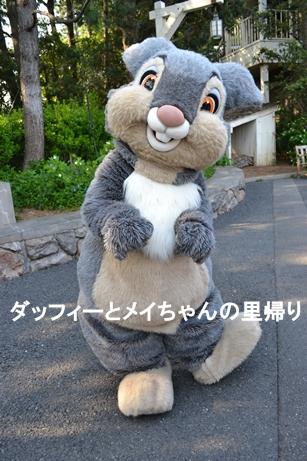 2014-5-4用 (1)