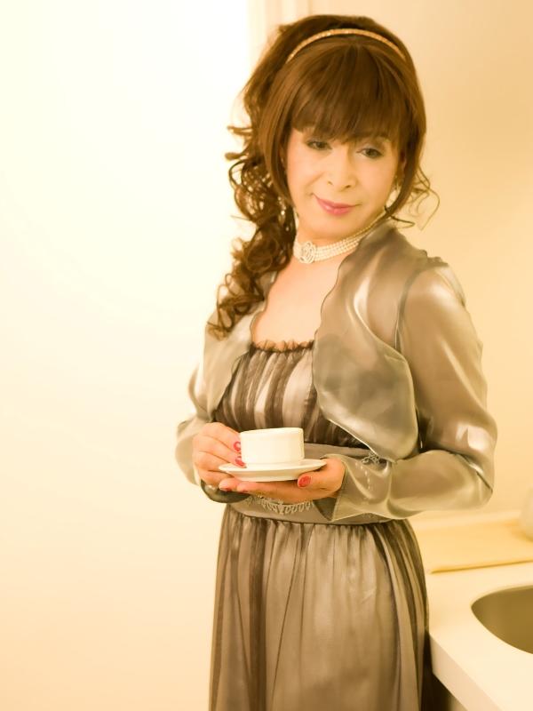 銀ドレス(6)