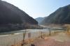 熊野川現状