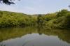 崇神天皇陵付近池