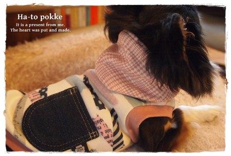 犬服*フード付タンクトップ07
