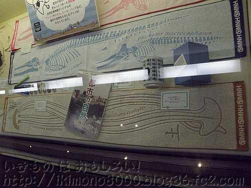オリジナルグッスの長いコウガイビルマフラータオル