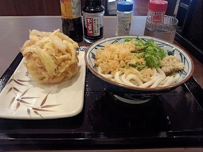 ぶっかけ・かき揚げ(野菜)