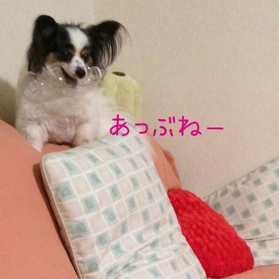 fc2blog_20140726224828eaf.jpg