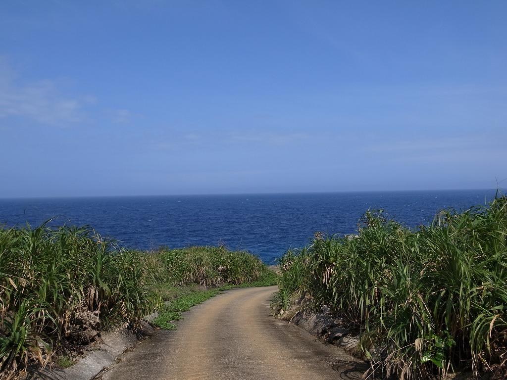 海へ 2012年5月1日