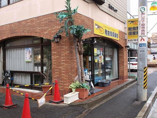 2014-3-16仙台ハチクラ1