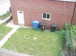 0 Whole Garden