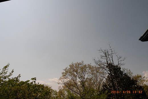 qq3335.jpg
