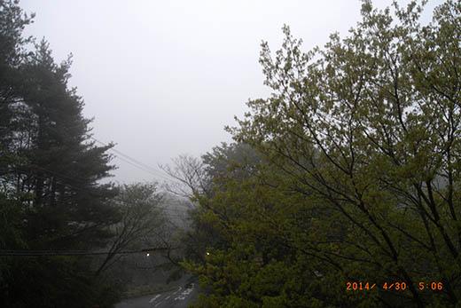 qq3454.jpg