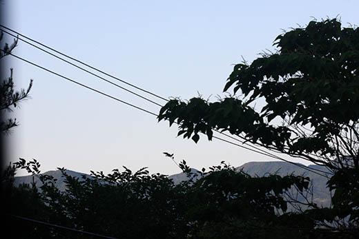 qq5666.jpg