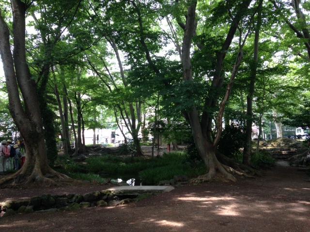 白滝公園 (18)