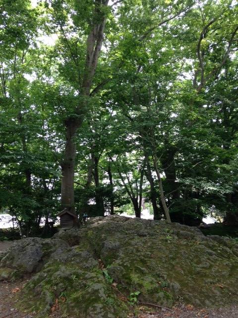白滝公園 (16)