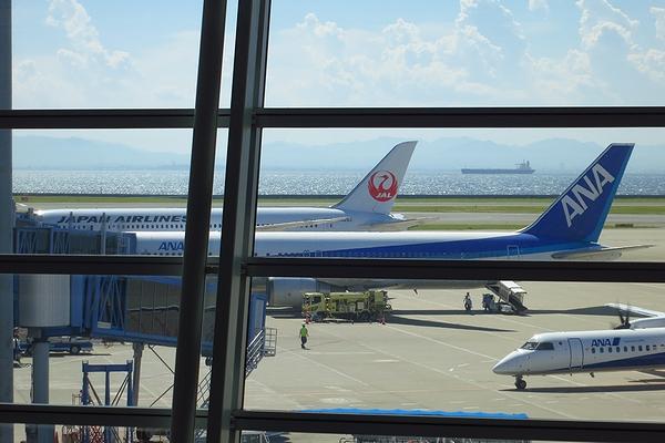 20140731_JAL787-04.jpg