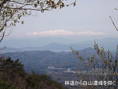 編集_DSCF2292