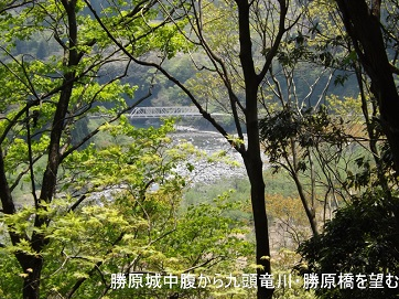 編集_DSCF2477勝原城北側尾根の中腹から勝原橋を望む