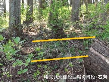 編集_DSCF2478勝原城北側段曲輪の階段石列