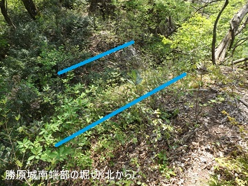編集_DSCF2484勝原城南端の堀切(北から)