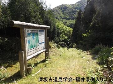 編集_DSCF2557