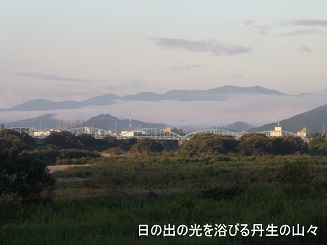 編集_DSCF2927
