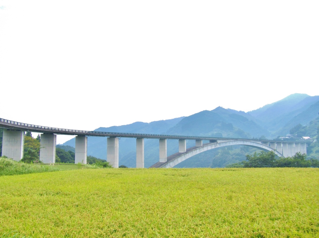 天翔大橋 (1)