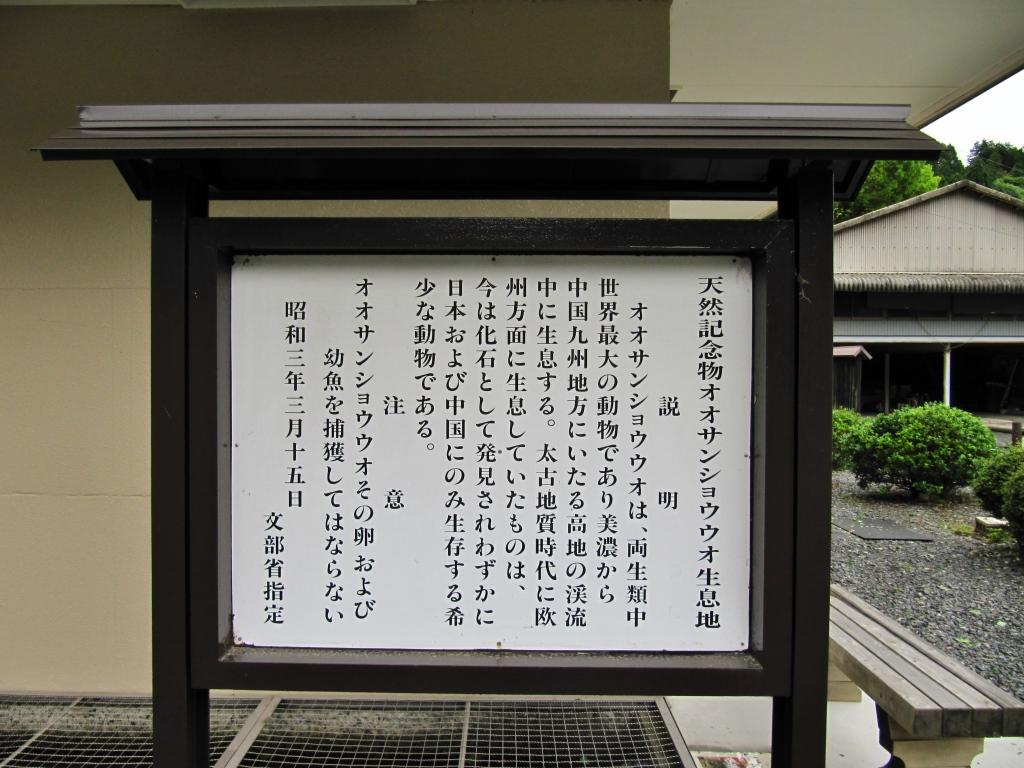 はんざき (1)