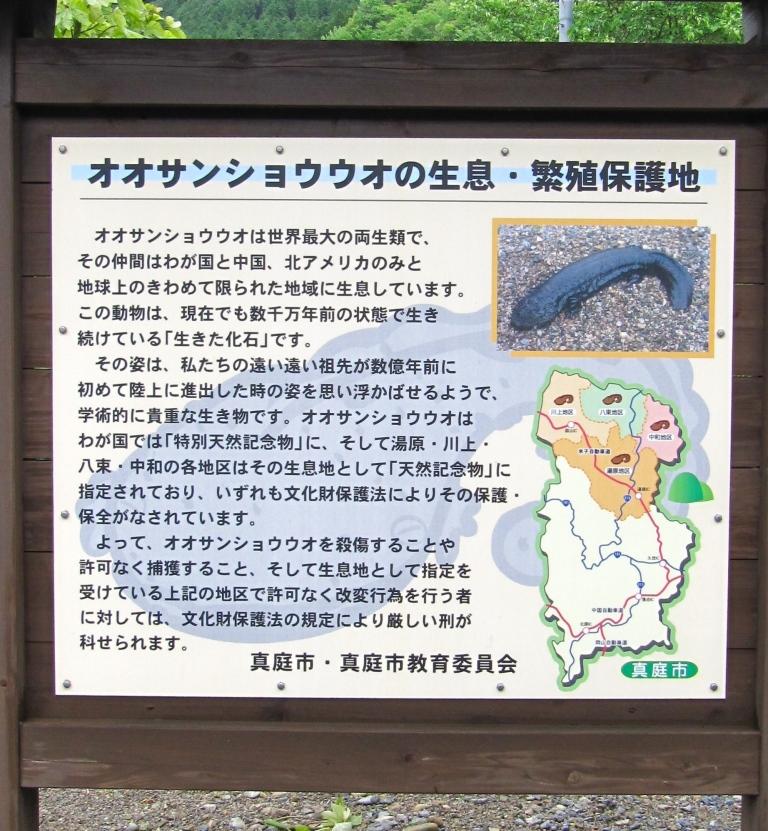 はんざき (9)