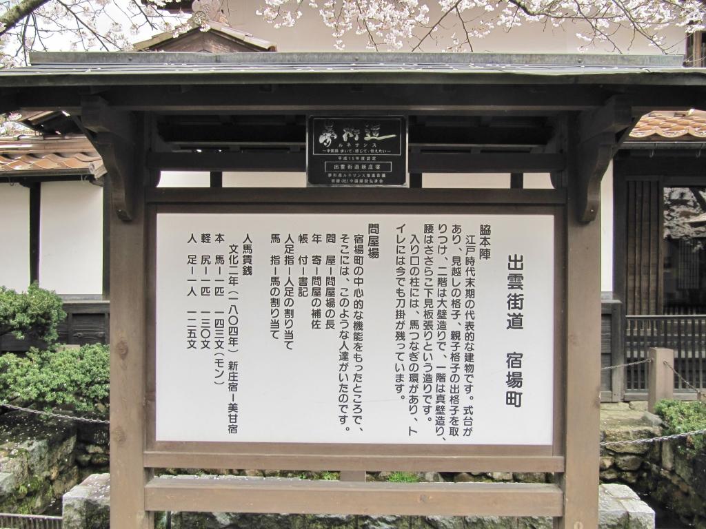 凱旋桜 (6)