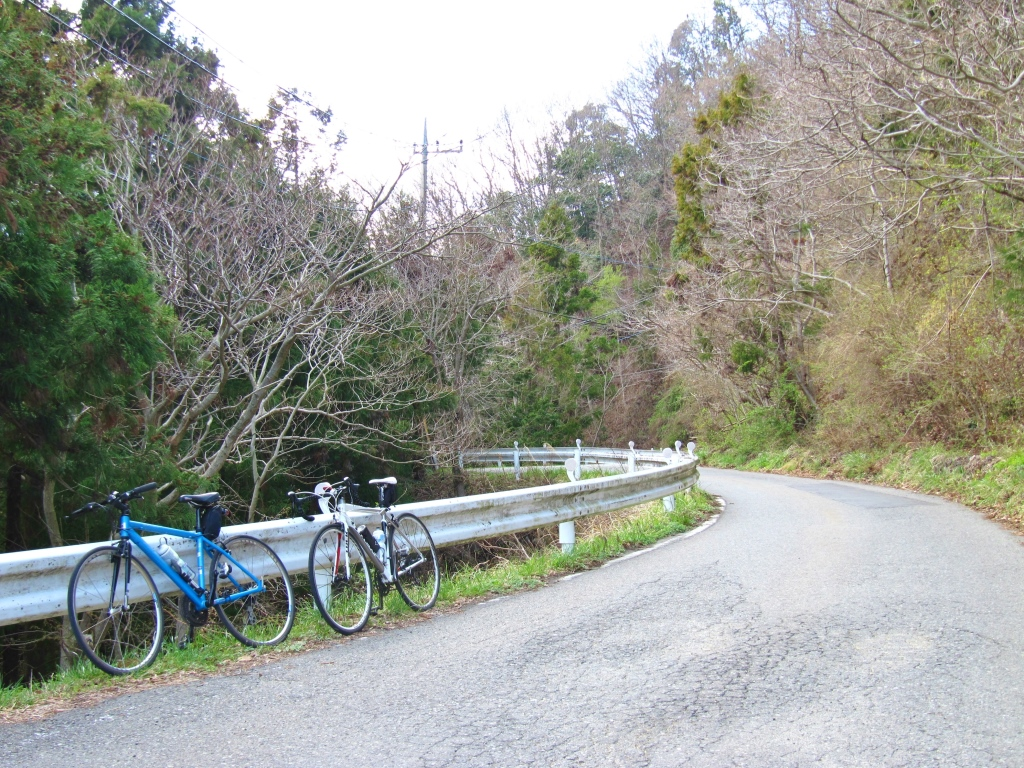 ヤビツ→宮ヶ瀬→大垂水 (12)