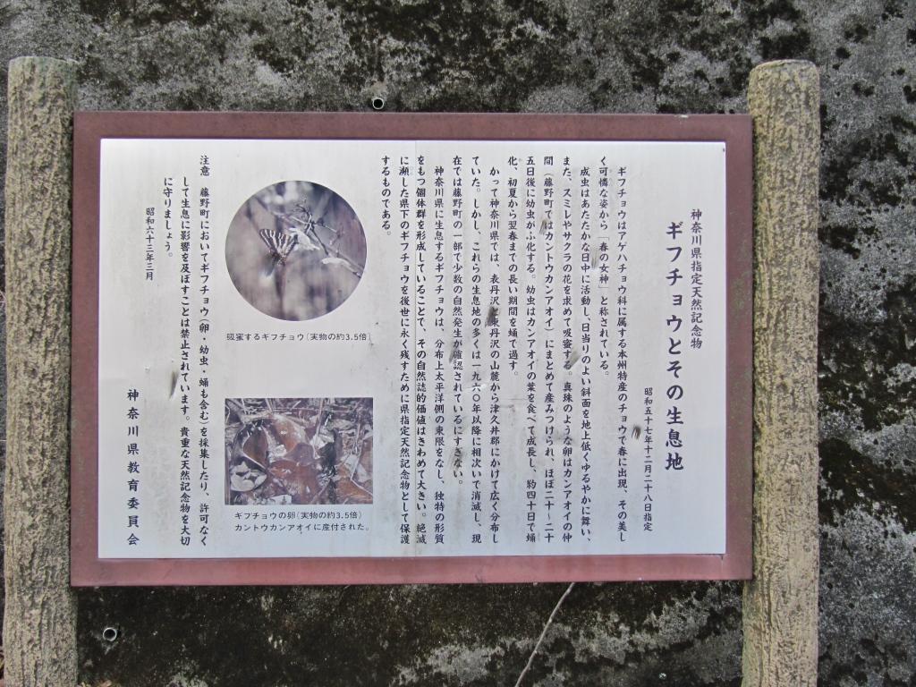 ヤビツ→宮ヶ瀬→大垂水 (13)