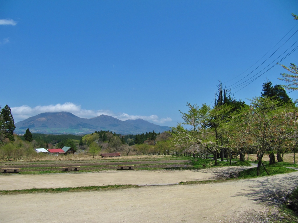 茅部神社 (14)