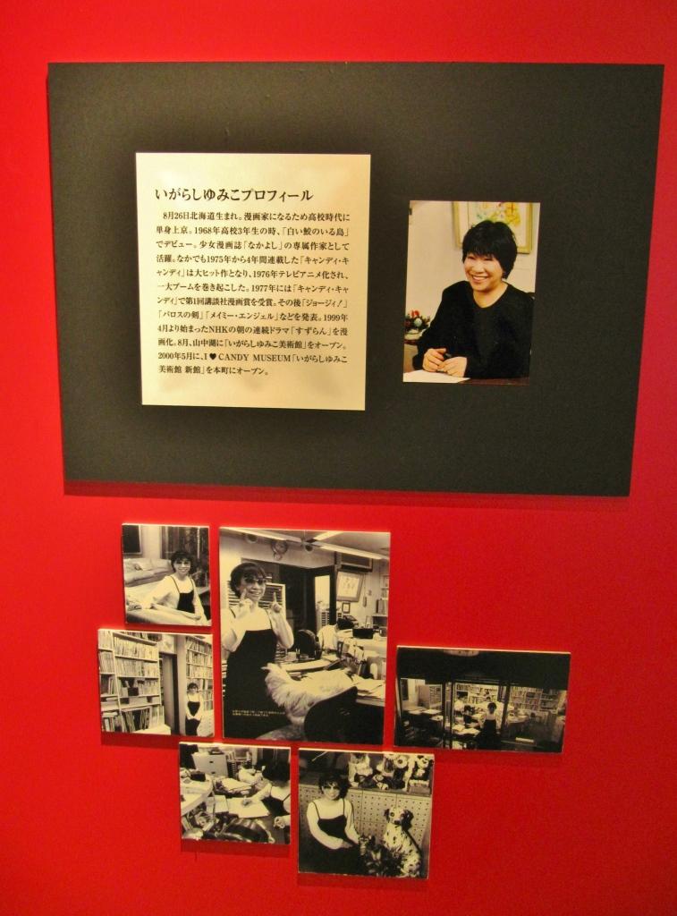 いがらしゆみこ美術館 (6)