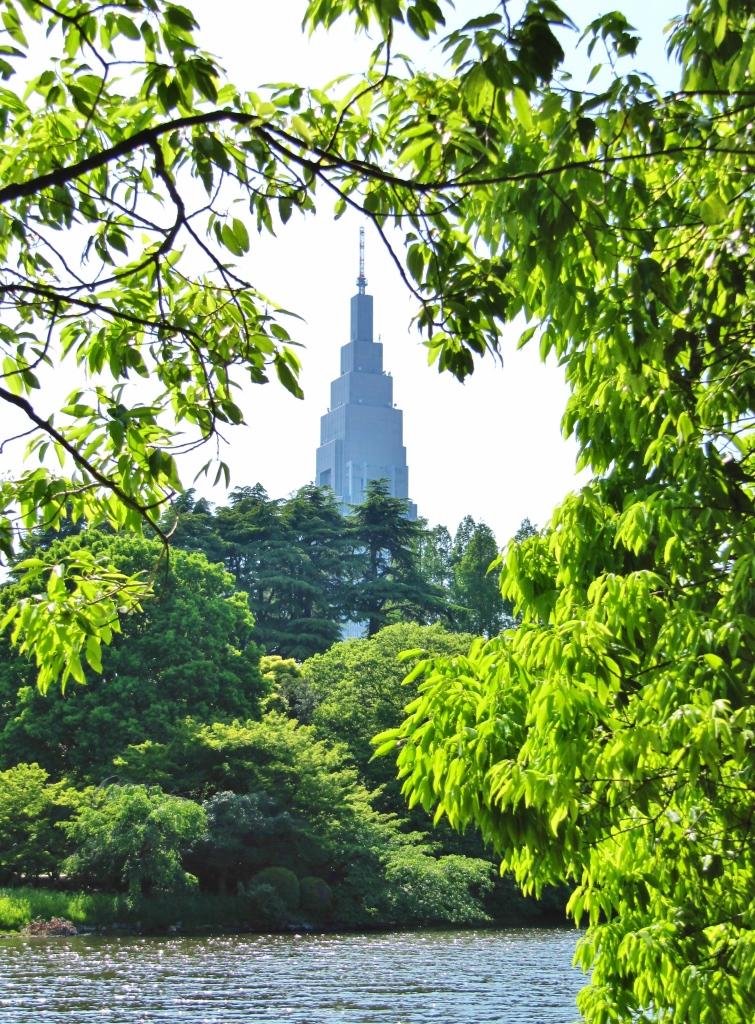 新宿御苑バラ (25)