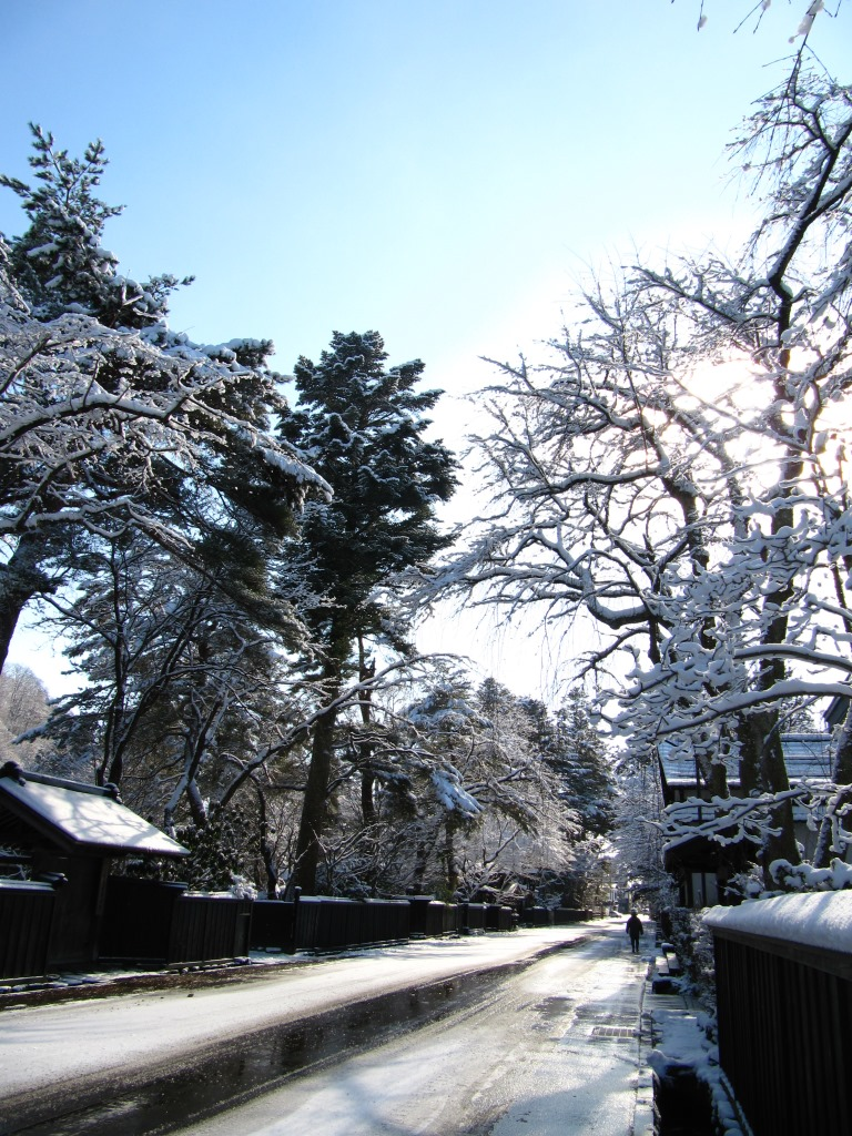角館の冬 (6)