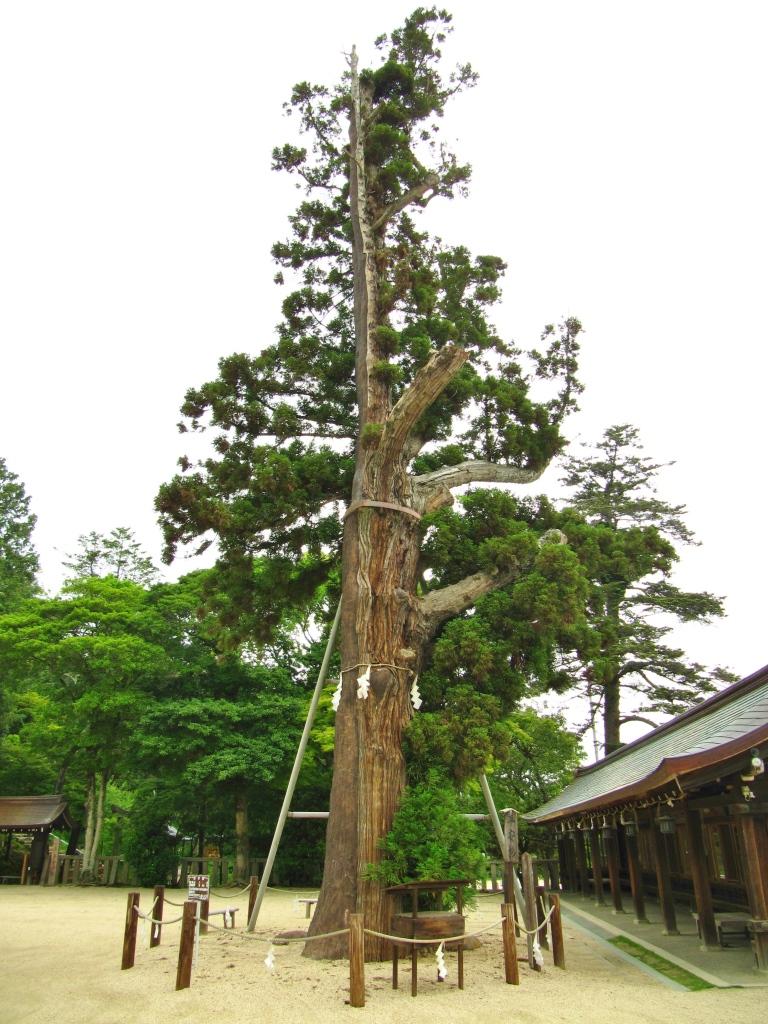 吉備津彦神社 (19)