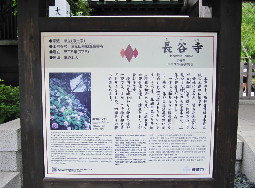 長谷寺紫陽花 (1)