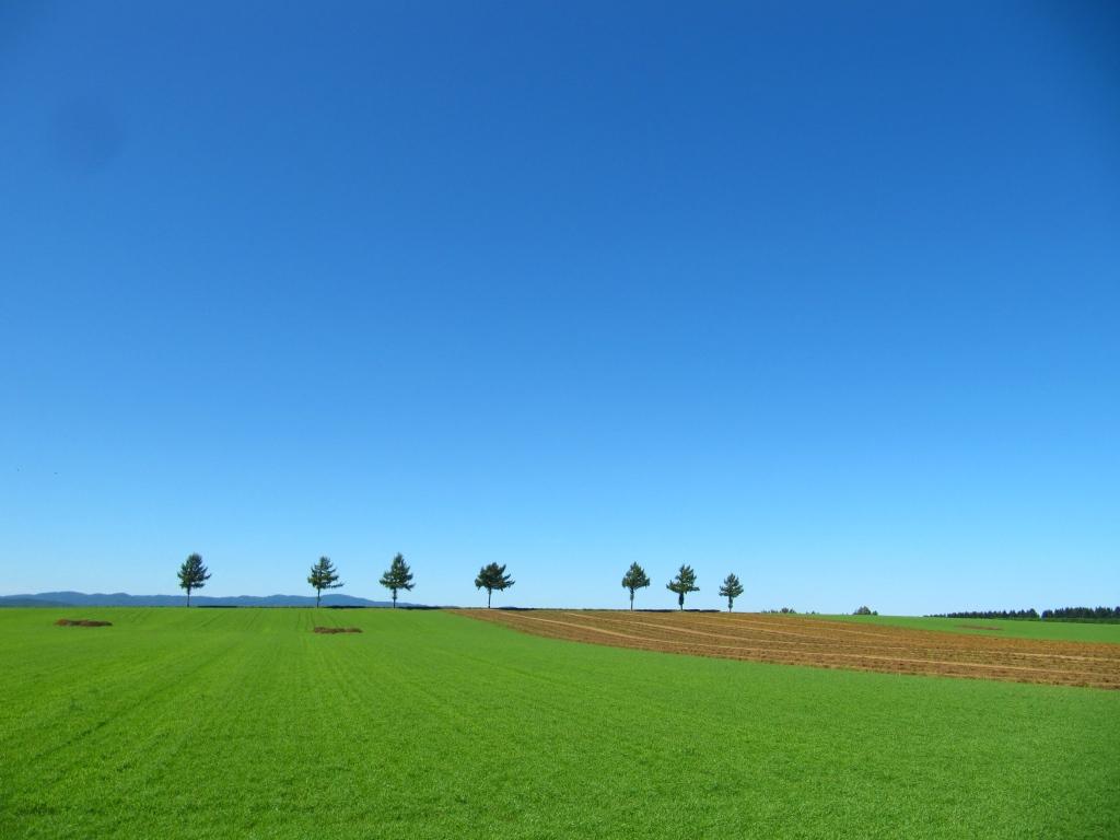 メルヘンの丘 (2)
