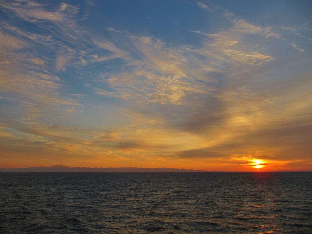 新日本海フェリー (11)