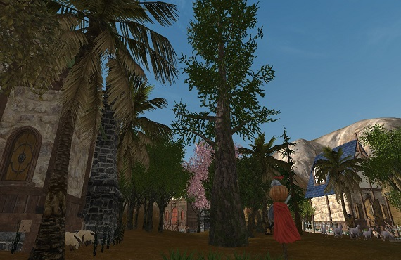 08-15 大きな木
