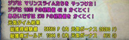 IMG_0600_R.jpg