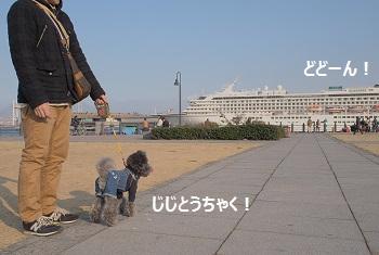 ジジ赤レンガ倉庫20140309