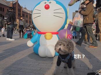ジジ赤レンガ倉庫20140309-6