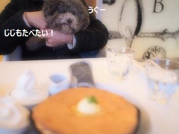 ジジさんバターへ20140309-10