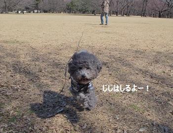 じじのこうえん20140315-8