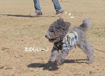 じじのこうえん20140315-10