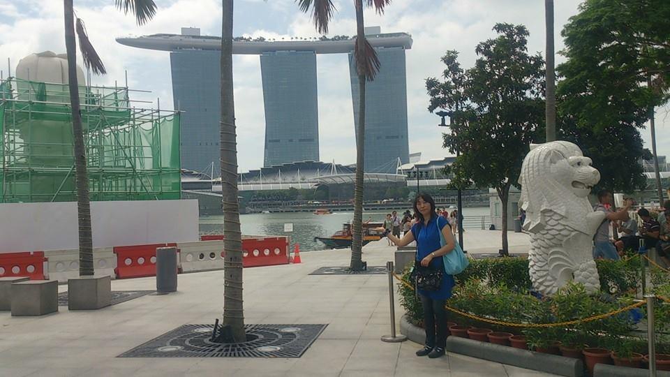 シンガポール1959536_478238718970293_1338458658_n