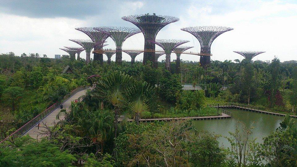 植物園10012530_478239252303573_663105051_n