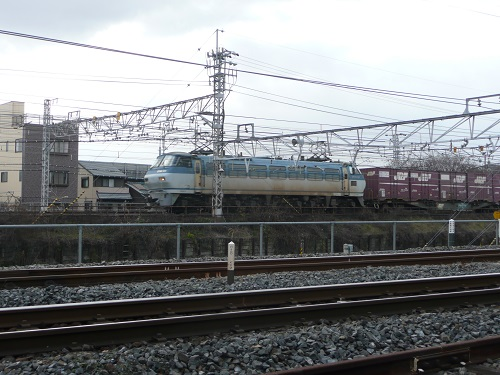 P1140914.jpg