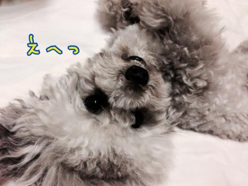 蜀咏悄+052106_convert_20140520160757