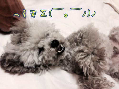 蜀咏悄+052109_convert_20140520160844