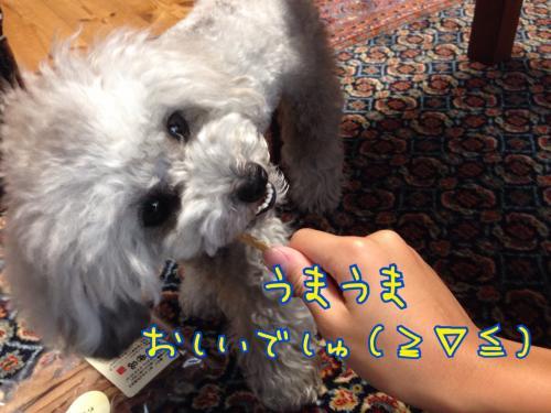 蜀咏悄+2061302_convert_20140612222143